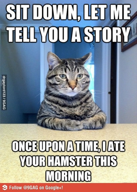 If my cat could type. And I had a hamster.