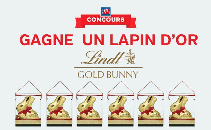 6 Lapins en chocolats Lindt de 1kg à remporter