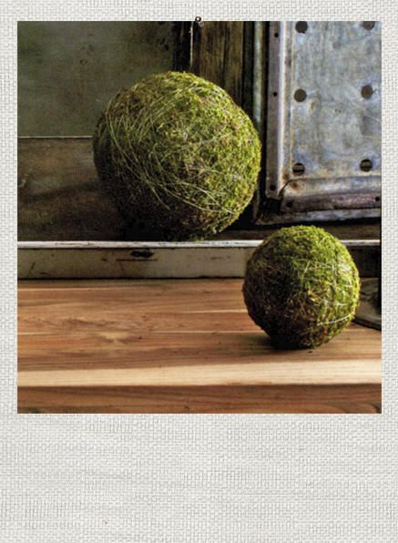 Decorative Moss Balls Beauteous 21 Best Ball Ornaments  Moss Images On Pinterest  Christmas Design Ideas