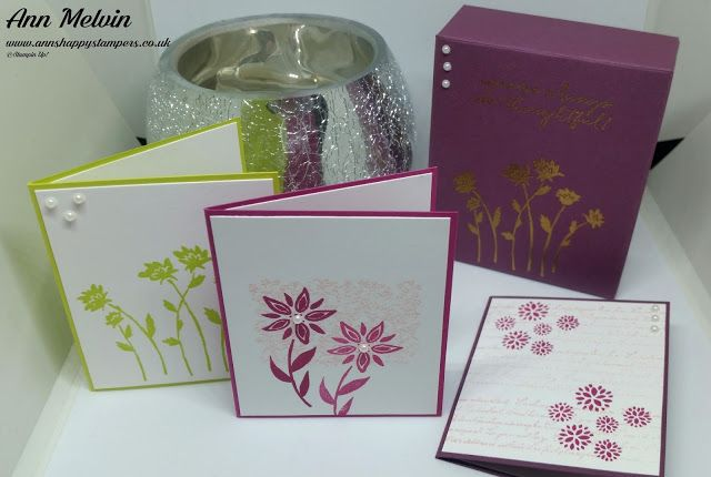 Ann's Happy Stampers: #5 New Catalogue Week, Teeny Tiny Note Cards & Mat...