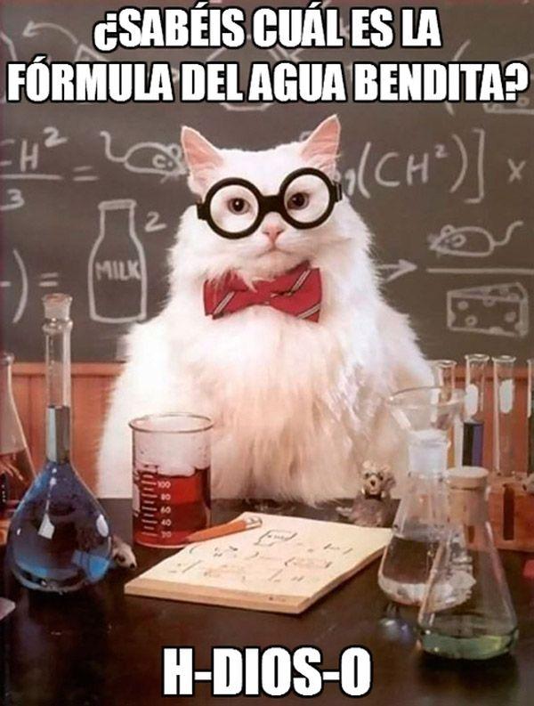 ¿Sabéis cuál es la fórmula del agua bendita?