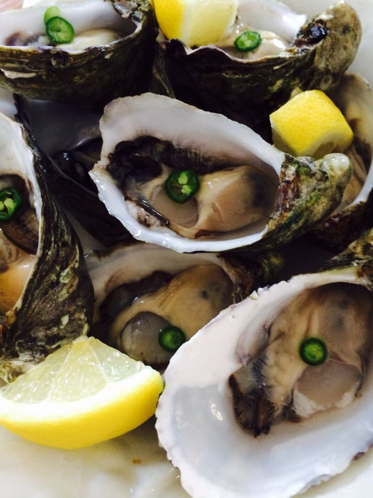 Oysters ,jalapeño & lemon!!!!! Heaven