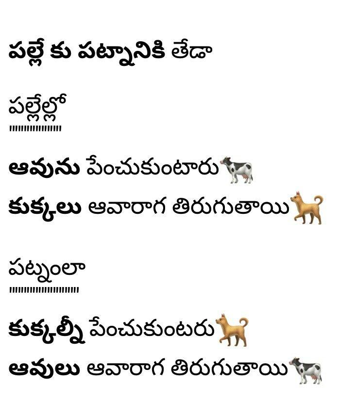 Best 25+ Telugu Jokes Ideas On Pinterest