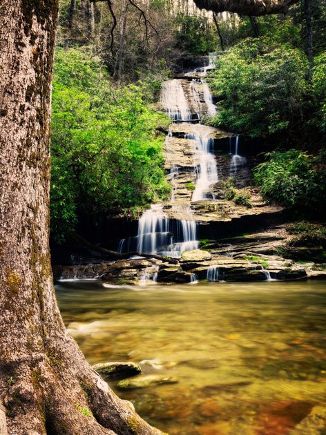 15 Best Smoky Mountains Images On Pinterest Mountains