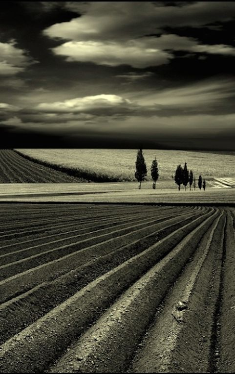Ready to go • photo: Veronika Pinke on Emorfes