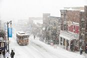 You've got to love Park City Utah - winter or summer.  I miss living there.  Definitely worth a visit!  http://www.visitparkcity.com/