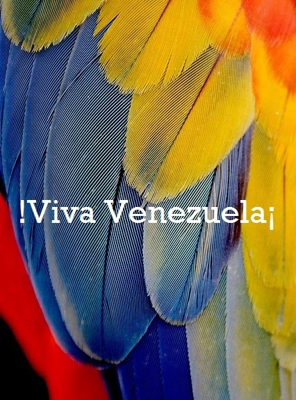 !Viva Venezuela¡ Viva America Libre | Repinned by @pedrosilvaconde                                                                                                                                                     More
