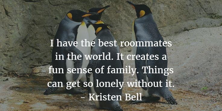 What I love most about my room is who I share it with.  #roommate #Roomie #Quotes