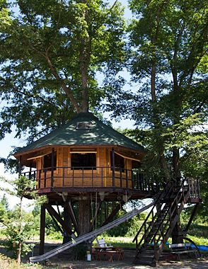 Small tree house in the back with kids platground