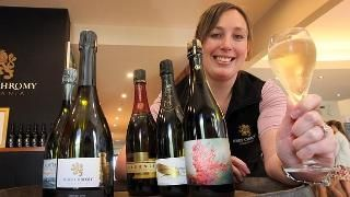 Abbey Young, of Josef Chromy Wines gets ready to host Effervescence Tasmania. Picture: RO