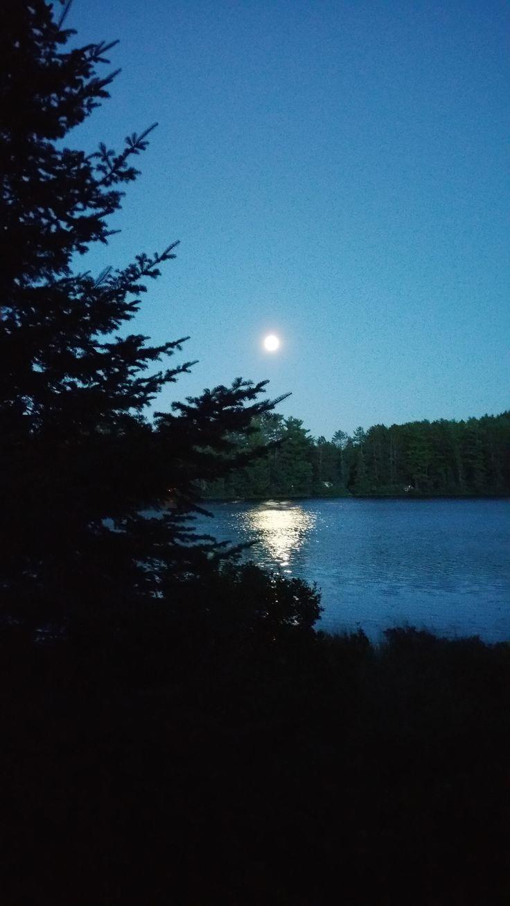 Blue Moon Mew Lake (Algonquin Provincial Park) 2015