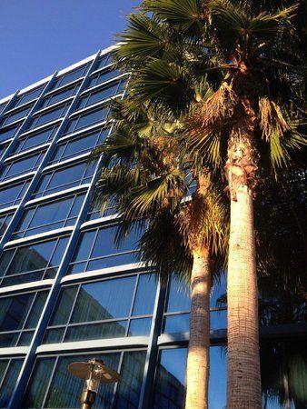 disneyland hotel California  lobby | Carpet in Elevator Lobby. - Picture of Disneyland Hotel, Anaheim ...