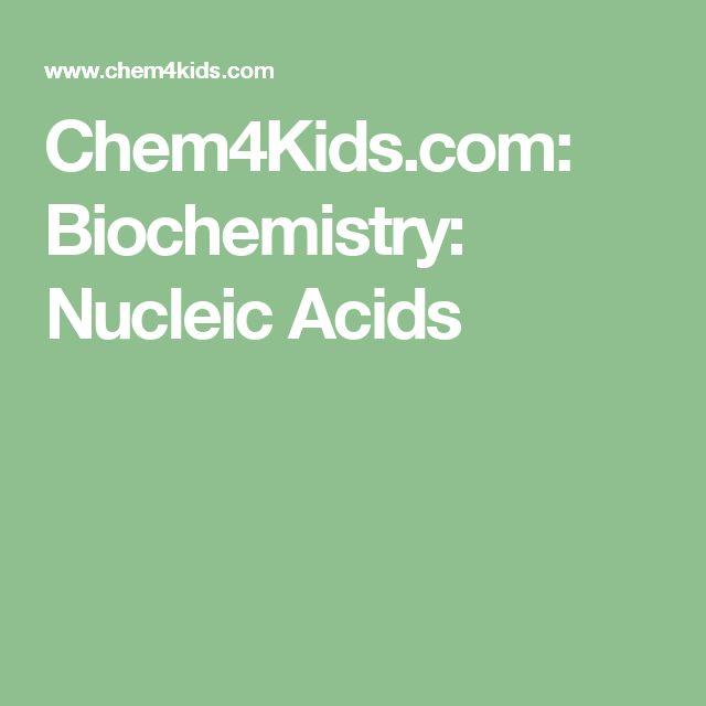 Chem4Kids.com: Biochemistry: Nucleic Acids