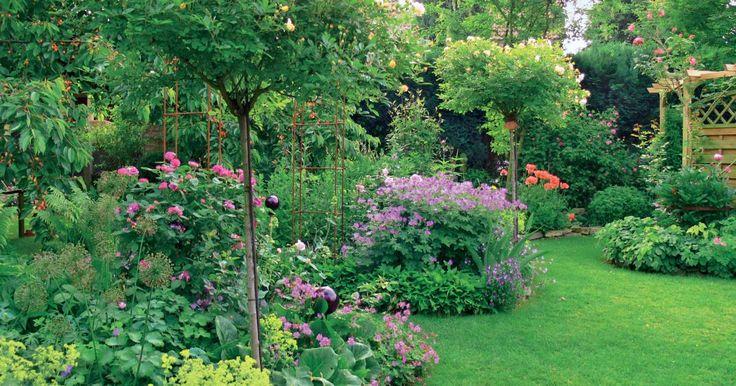Geduld ist eine Tugend, die bei der Neuanlage oder Umgestaltung eines Gartens ni…
