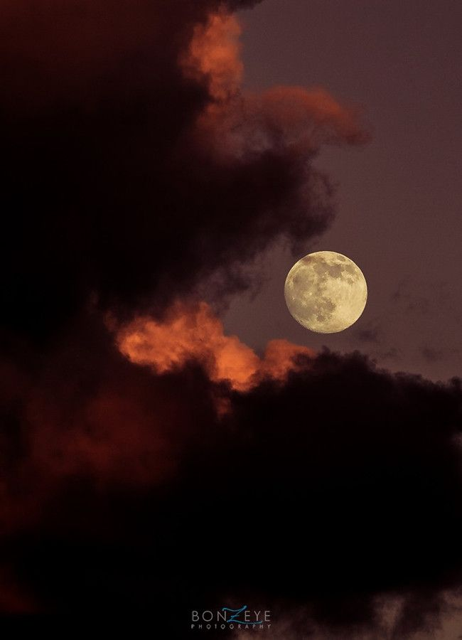 The moon is the north winds cookie by Bonny Fleming on 500px.