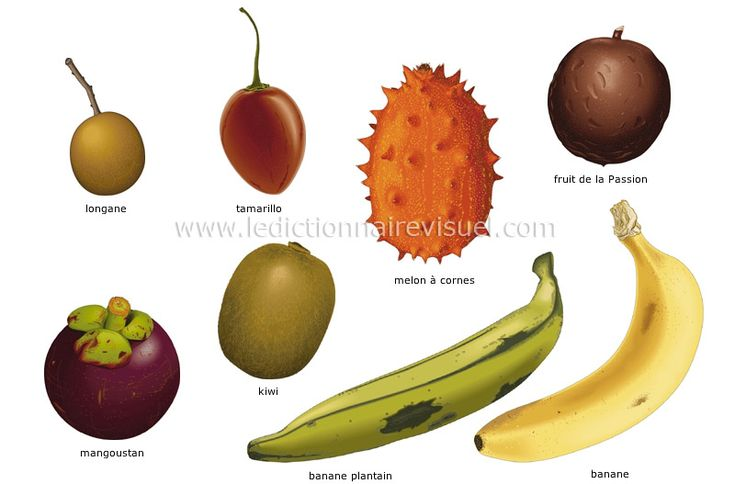 Fruits tropicaux fruits vari s g n ralement d origine exotique plus ou moins commercialis s - Fruit ou legume en i ...
