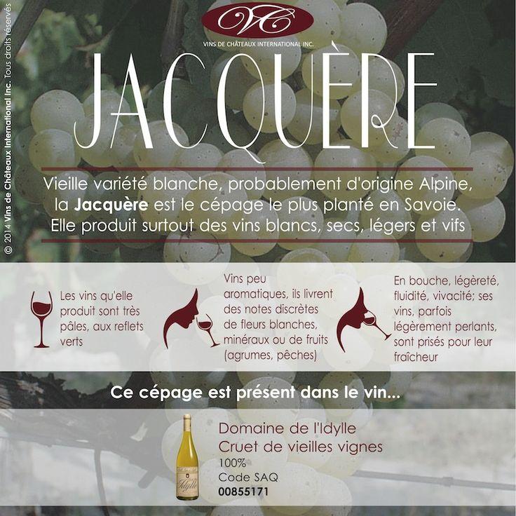 Retrouvez le cépage Jacquère dans le vin blanc du Clos d'Idylle, Cruet Vieille Vigne, vin de Savoie code SAQ 00855171 http://www.saq.com/page/fr/saqcom/vin-blanc/domaine-de-lidylle-cruet-vieille-vigne-didylle-2013/855171
