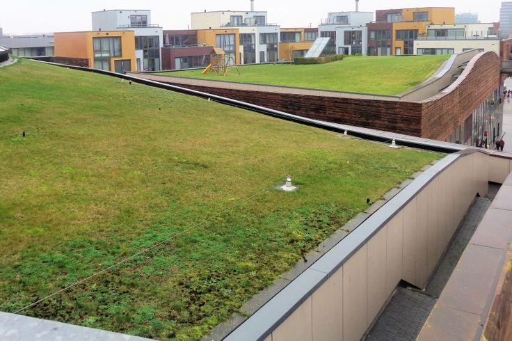 Vanaf het dakterras van de V&D heeft u een mooi uitzicht op de appartementen, de heuvelachtige grasdaken en Het Vliegend Tapijt, de bruine rand die rondom de grasmat is aangebracht.