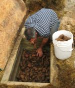 Simple root cellar - need this.