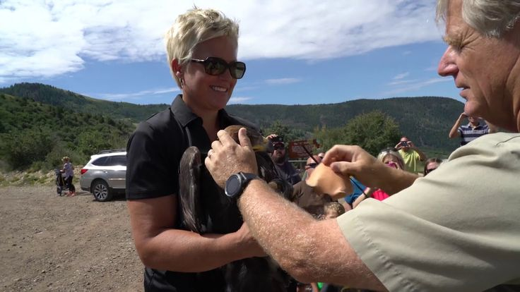 On July 29, 2017 the Southwest Wildlife Foundation invited O.U.R. Team Members to participate in an eagle release in Cedar City, Utah. This golden eagle was ...