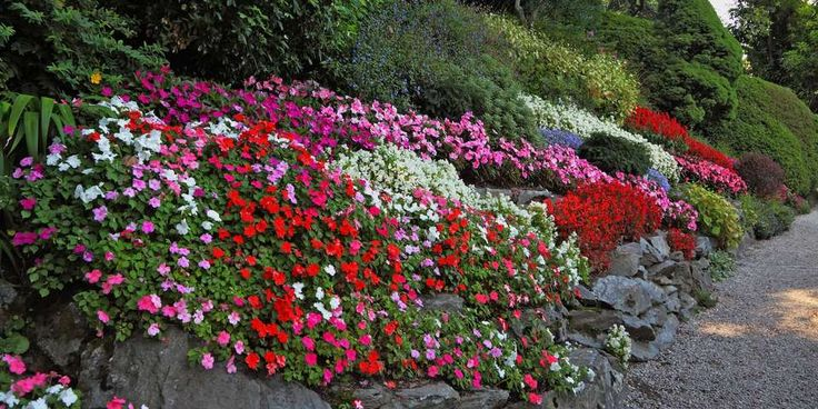 HAGENS MIDTPUNKT: Skråningen trenger ikke være ustelt og kjedelig. Med litt arbeid kan du få den til å bli hagens midtpunkt.