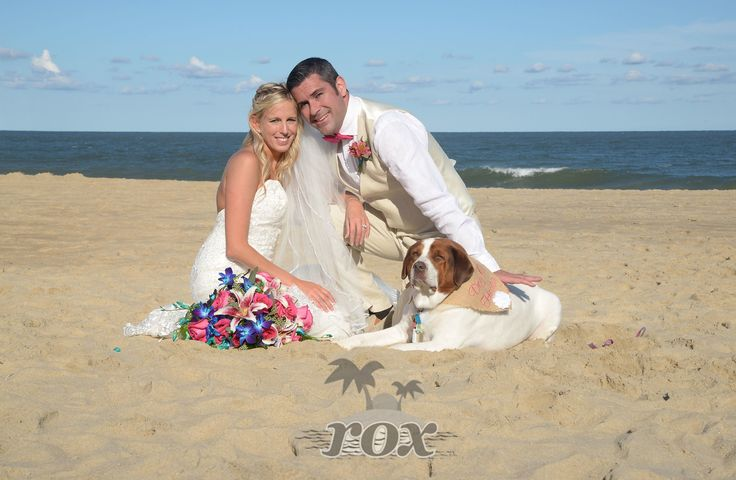 Dog is integral part of wedding on the Clarion Hotel beach in Ocean City, MD:  https://www.roxbeachweddings.com/