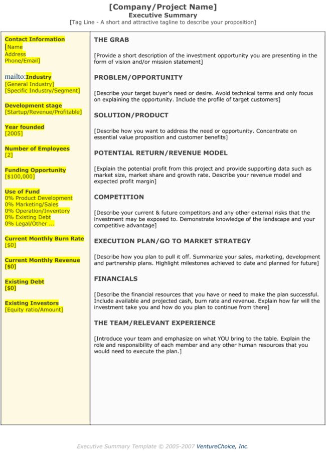 Best Executive Summary Template Entertaining Business Plan Executive