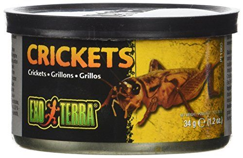 The Exo Terra canned small crickets foods are a convenient way to feed insects. These insects and snails have been cooked in the can to maintain nutritional value flavour and aroma. It also softens t...