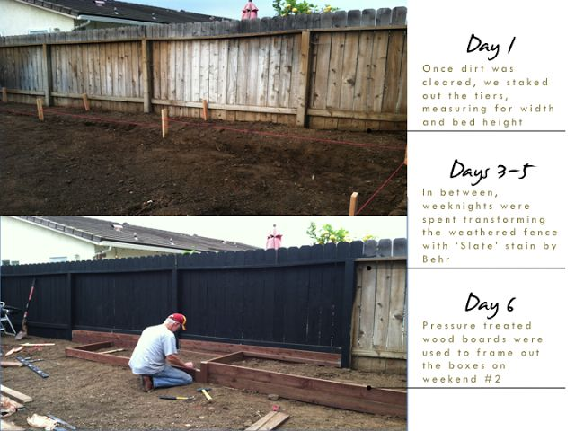 black stain fence