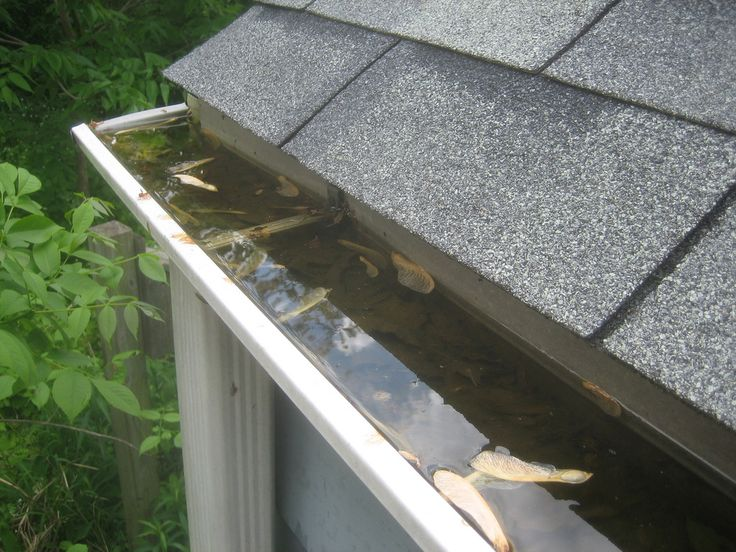 gutter overflow outlet how to clean