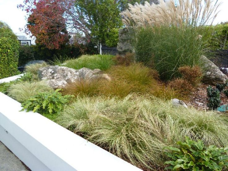 36 best New Zealand native garden designs images on Pinterest ... - grass garden design