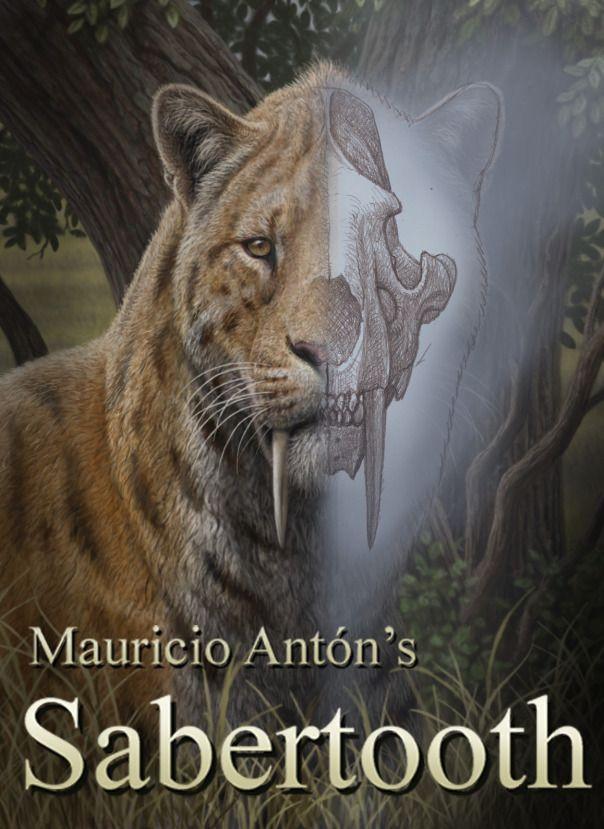 Smilodon populator - Mauricio Antón #Sabertooth