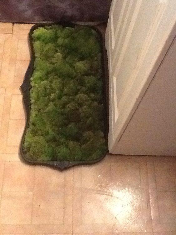 Bathroom moss mat