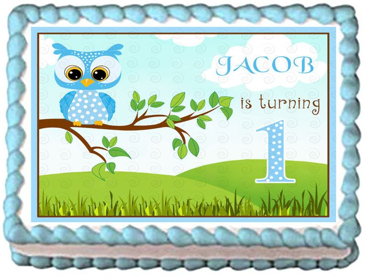 BLUE OWL 1st Year Birthday Party Edible image Cake topper decoration