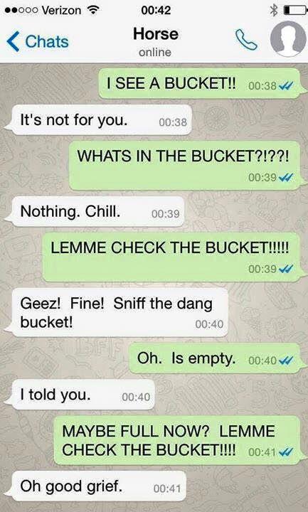 horse texts