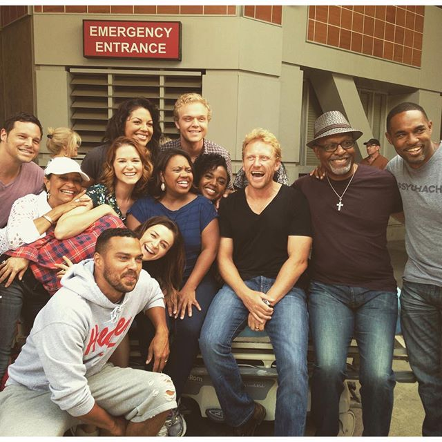 Justin Chambers, Debbie Allen, Jesse Williams, Caterina Scorsone, Sarah Drew, Sara Ramirez, Joe Adler, Chandra Wilson, Jerrika Hinton, Kevin McKidd, James Pickens Jr, and Jason George