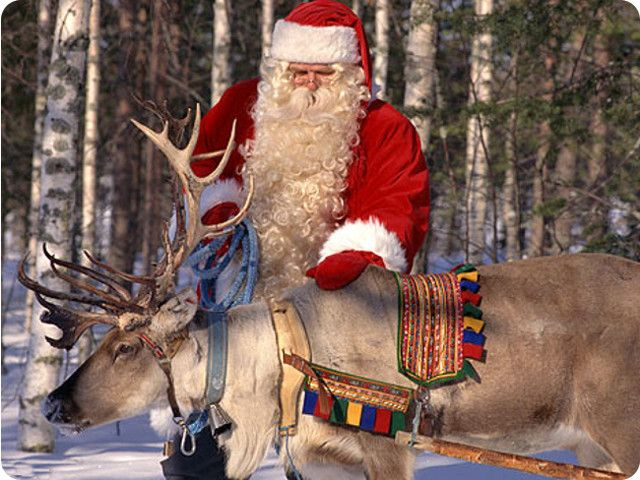 R Reindeer Real 92 best Pictures of Sa...