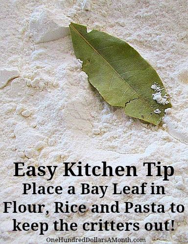 How to keep bugs out of flour, rice, pasta ... put a bay leaf in