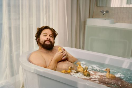 Zach Galifianakis poses nude with live ducklings in GQ | Photographed by Martin Schoeller: Dust Jackets, Dust Wrappers, Books Jackets, Zach Galifianakis, Funny Pictures, Bathtubs, Ducks, Funny Stuff, Dust Covers