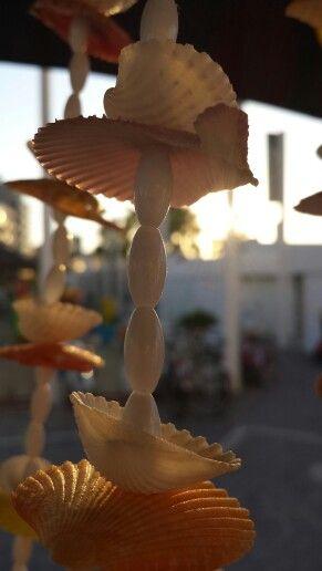 Shells...