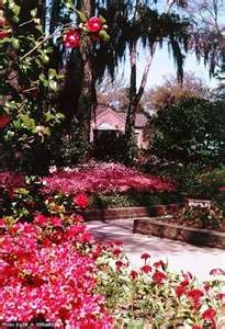 Bellingrath Botanical Gardens   Home  This has been one of my favorite  places since I moved to Alabama 55 best BELLINGRATH GARDENS images on Pinterest   Mobile alabama  . Mobile Alabama Botanical Gardens. Home Design Ideas