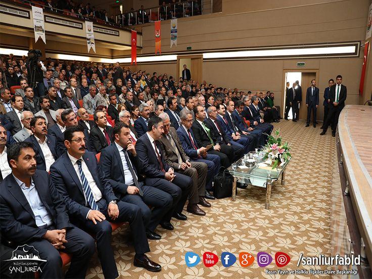 Urfa'nın Düşman İşgalinden Kurtuluşunun 97. yıl dönümü dolayısıyla Büyükşehir Belediyemiz Kurtuluş Programını gerçekleştirdi.