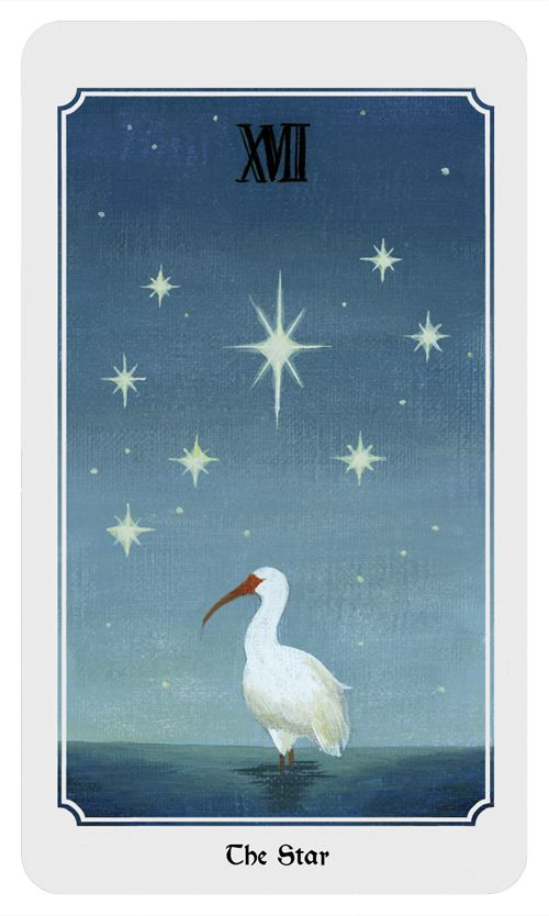 The Star:Hope for the future, courage, healing, generosity, inspiration. From the Anima Mundi tarot deck.