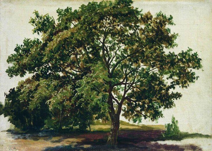 Шишкин. Дуб.1889