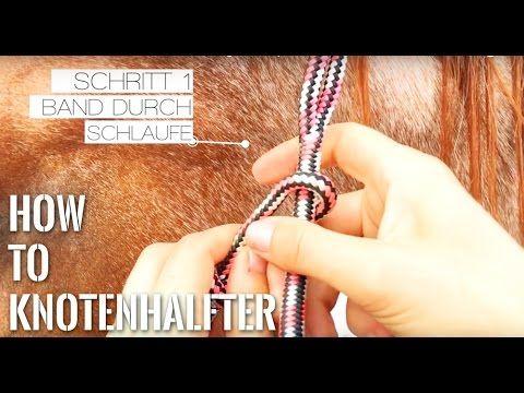 [DiY] Knotenhalfter ganz einfach selber machen - mit Diamantknoten - Tutorial   Serenity Horses - YouTube