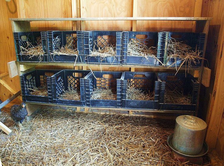Chicken Nesting Boxes Ideas | The first step was to build a frame to hold the crates. I decided to ...