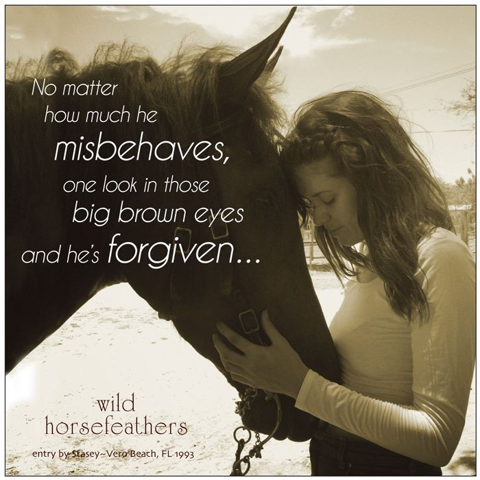 horse quotes and sayings | Cowgirl Quotes And Sayings About Horses Horse Quote of the Week