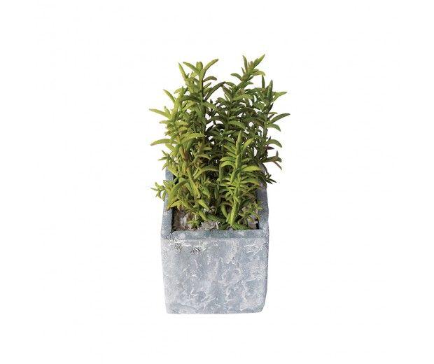 artificial cactus spacegreen