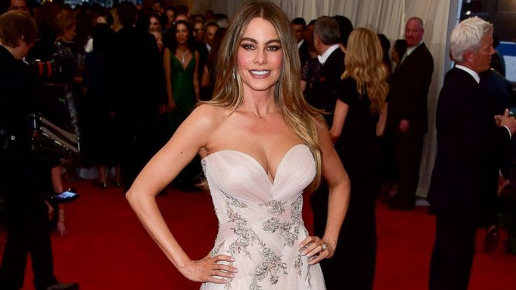 Sofia Vergara on Embryo Battle, Starring in 'Hot Pursuit' With an Oscar Winner Sofia Vergara  #SofiaVergara