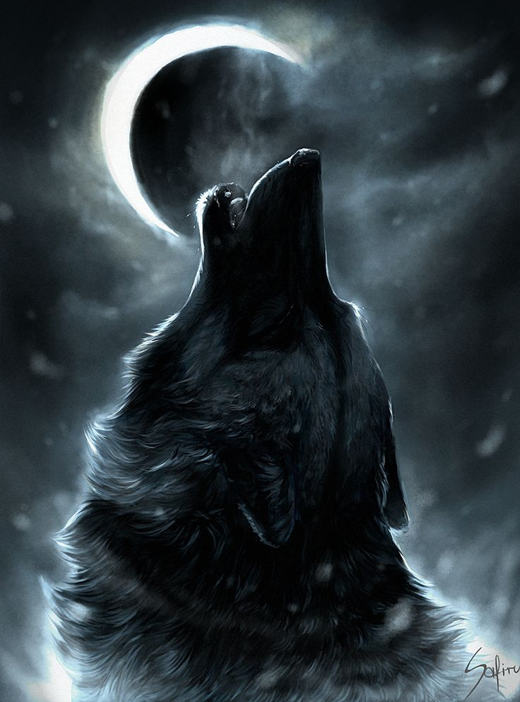 Howling high on a mountain top, Sending shivers up my spine, Stands a lonely sentinel Calling to others of his kind. - by Charles W. Russell